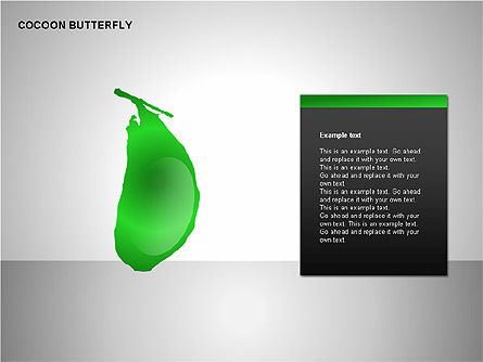 Cocoon Butterfly Diagram , Slide 6, 00177, Stage Diagrams — PoweredTemplate.com