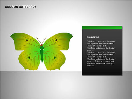 Cocoon Butterfly Diagram , Slide 7, 00177, Stage Diagrams — PoweredTemplate.com