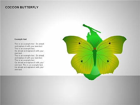 Cocoon Butterfly Diagram , Slide 8, 00177, Stage Diagrams — PoweredTemplate.com