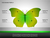 Cocoon Butterfly Diagram #10