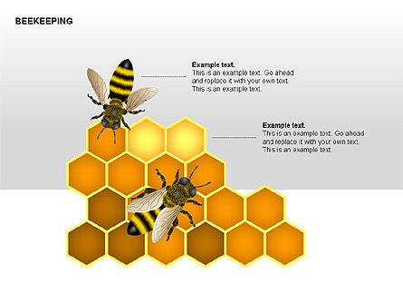 Bee Diagrams, Slide 10, 00239, Matrix Charts — PoweredTemplate.com