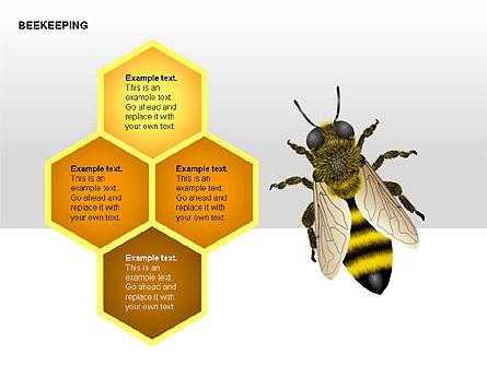 Bee Diagrams, Slide 11, 00239, Matrix Charts — PoweredTemplate.com