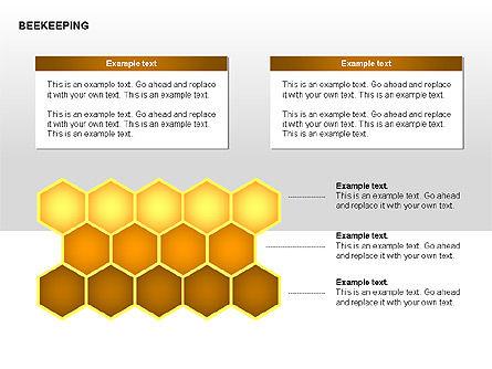 Bee Diagrams, Slide 12, 00239, Matrix Charts — PoweredTemplate.com