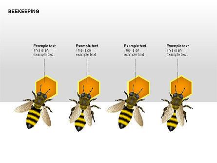 Bee Diagrams, Slide 13, 00239, Matrix Charts — PoweredTemplate.com