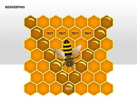 Bee Diagrams, Slide 14, 00239, Matrix Charts — PoweredTemplate.com