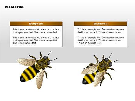 Bee Diagrams, Slide 15, 00239, Matrix Charts — PoweredTemplate.com