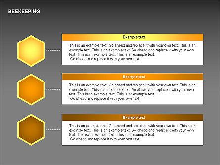 Bee Diagrams, Slide 5, 00239, Matrix Charts — PoweredTemplate.com