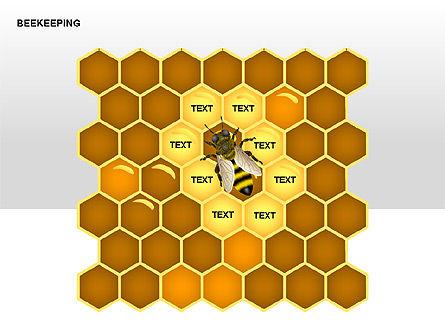 Bee Diagrams, Slide 6, 00239, Matrix Charts — PoweredTemplate.com