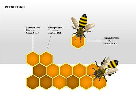 Bee Diagrams, Slide 8, 00239, Matrix Charts — PoweredTemplate.com