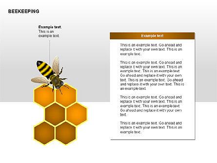 Bee Diagrams, Slide 9, 00239, Matrix Charts — PoweredTemplate.com