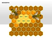 Bee Diagrams#3
