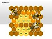 Bee Diagrams#4