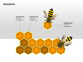 Bee Diagrams#8