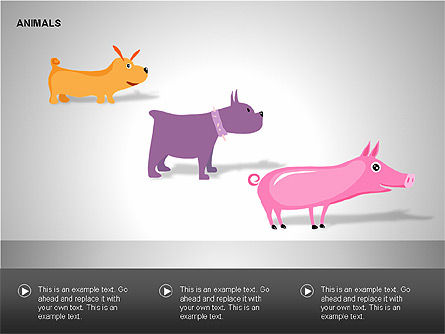 Animals Diagrams, Slide 10, 00264, Education Charts and Diagrams — PoweredTemplate.com