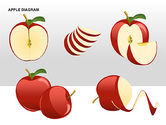 Apple Diagrams Collection#14