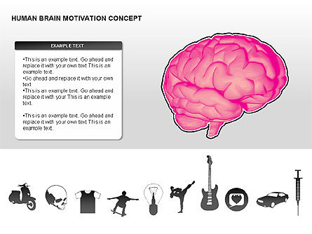 Organizational Charts: Human Brain Motivation Diagrams #00269