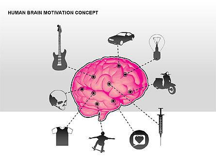 Human Brain Motivation Diagrams, Slide 10, 00269, Organizational Charts — PoweredTemplate.com