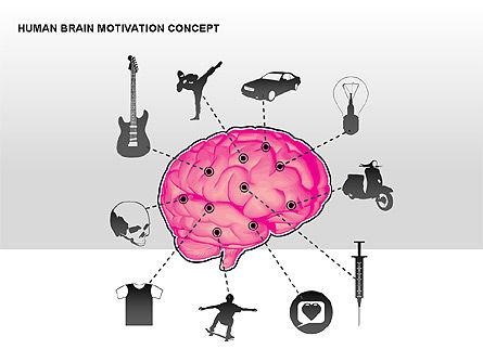 Human Brain Motivation Diagrams, Slide 11, 00269, Organizational Charts — PoweredTemplate.com