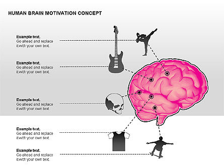 Human Brain Motivation Diagrams, Slide 13, 00269, Organizational Charts — PoweredTemplate.com