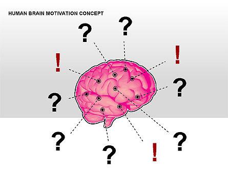 Human Brain Motivation Diagrams, Slide 14, 00269, Organizational Charts — PoweredTemplate.com