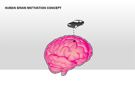 Human Brain Motivation Diagrams, Slide 2, 00269, Organizational Charts — PoweredTemplate.com