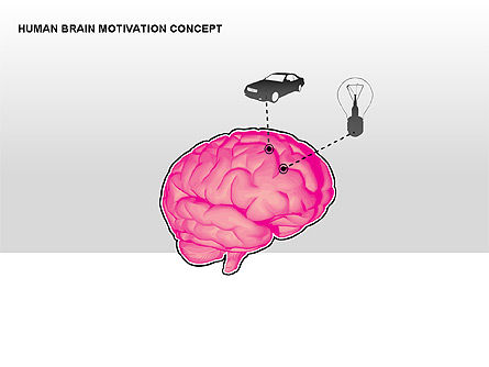 Human Brain Motivation Diagrams, Slide 3, 00269, Organizational Charts — PoweredTemplate.com