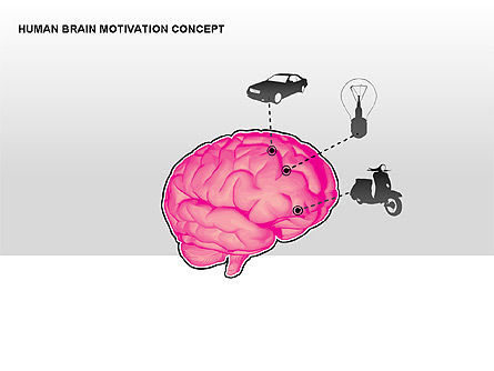 Human Brain Motivation Diagrams, Slide 4, 00269, Organizational Charts — PoweredTemplate.com