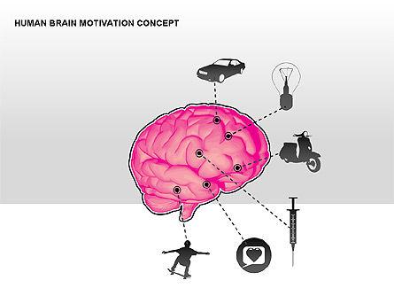 Human Brain Motivation Diagrams, Slide 7, 00269, Organizational Charts — PoweredTemplate.com