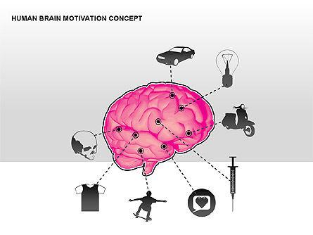 Human Brain Motivation Diagrams, Slide 9, 00269, Organizational Charts — PoweredTemplate.com