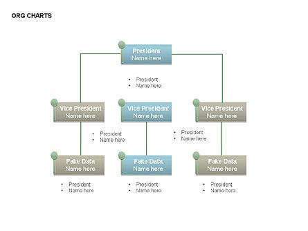 Organizational Charts: Organizational Charts #00344