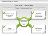 Business Models: Performance Management Diagrams with Checks #00554