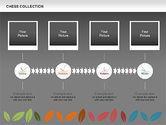 Seasons Timeline Diagram#15