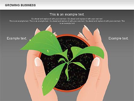 Growing Business Diagram, Slide 12, 00624, Business Models — PoweredTemplate.com