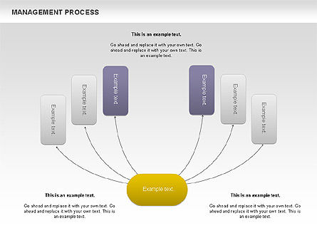 Process Diagrams: Management Process Flowchart #00680