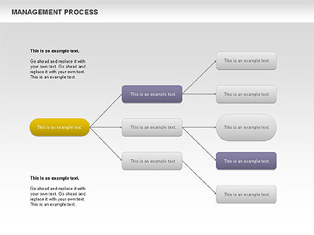 Management Process Flowchart - Presentation Template for