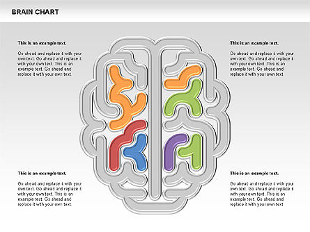 Brain Chart, 00701, Stage Diagrams — PoweredTemplate.com