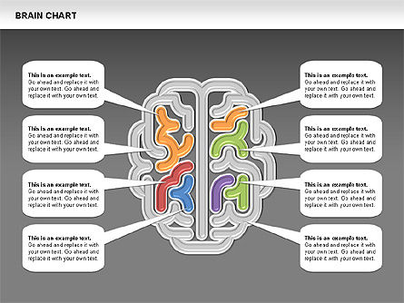 Brain Chart, Slide 12, 00701, Stage Diagrams — PoweredTemplate.com
