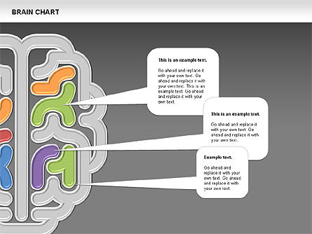 Brain Chart, Slide 15, 00701, Stage Diagrams — PoweredTemplate.com