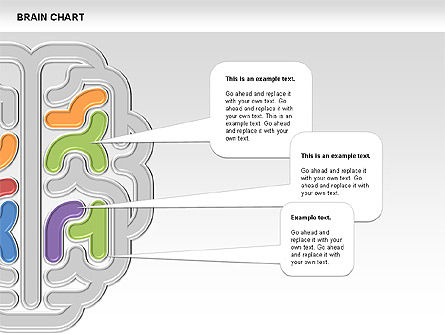 Brain Chart, Slide 5, 00701, Stage Diagrams — PoweredTemplate.com