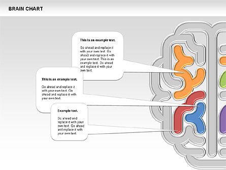Brain Chart, Slide 7, 00701, Stage Diagrams — PoweredTemplate.com