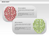 Brain Chart#10