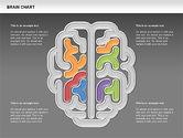 Brain Chart#11