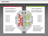 Brain Chart#14
