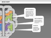 Brain Chart#15