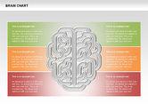 Brain Chart#6