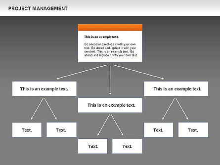 Project Management, Slide 12, 00720, Business Models — PoweredTemplate.com
