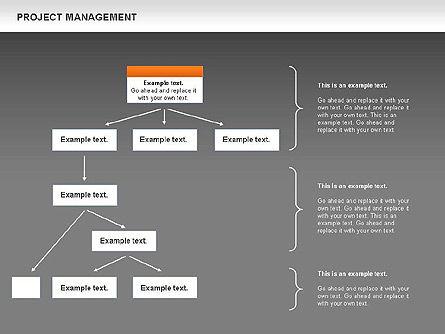 Project Management, Slide 14, 00720, Business Models — PoweredTemplate.com