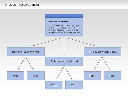 Project Management, Slide 5, 00720, Business Models — PoweredTemplate.com