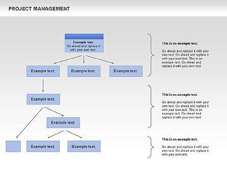 Project Management, Slide 6, 00720, Business Models — PoweredTemplate.com