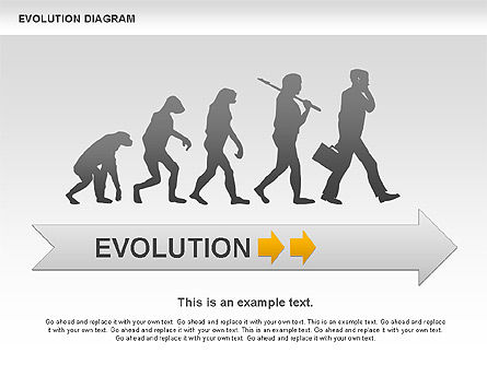 Evolution Diagram, 00934, Education Charts and Diagrams — PoweredTemplate.com